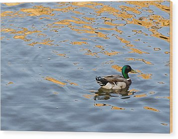 Golden Ripples Wood Print by Keith Armstrong
