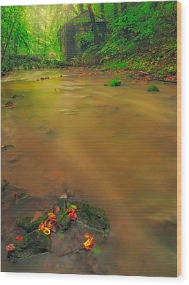 Wood Print featuring the photograph Golden River by Maciej Markiewicz