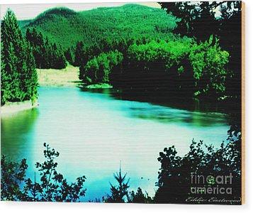 Gorge Waterway Victoria British Columbia Wood Print