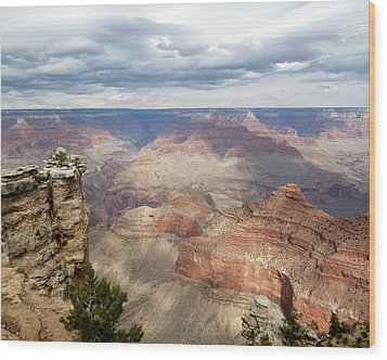 Grand Canyon National Park Wood Print by Laurel Powell