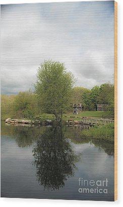Grays Mill Pond Wood Print by Angela DeFrias