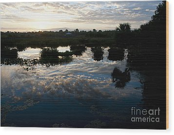 Green Cay Wetlands, Fl Wood Print by Mark Newman
