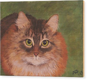 Green Eyed Kitty Wood Print