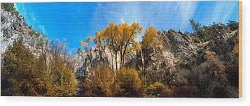 Wood Print featuring the photograph Guardians by David Andersen