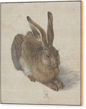 Young Hare Wood Print by Albrecht Durer
