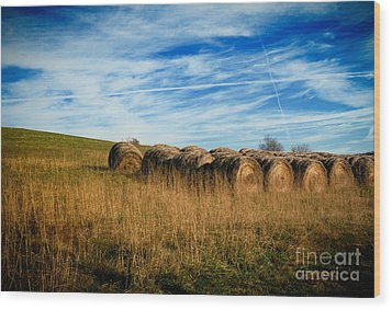 Hay Bales And Contrails Wood Print by Amy Cicconi