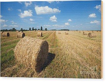 Haystacks In The Field Wood Print by Michal Bednarek