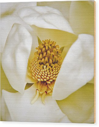 Wood Print featuring the painting Heart Of Magnolia by Debra Crank