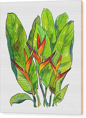 Heliconia Wood Print by Diane Thornton