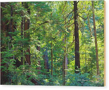 Hoh Rain Forest Wood Print by Jeanette C Landstrom