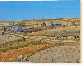 Home On The Range Wood Print by Kelly Reber