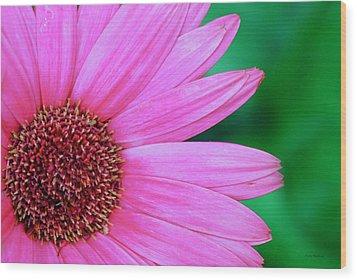 Pink Gerbera Flower Wood Print
