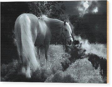 Horse Wood Print by Christine Sponchia