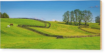 Horse Farm Fences Wood Print