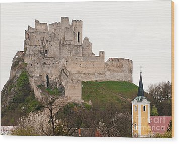 Wood Print featuring the photograph Hrad Beckov - Castle by Les Palenik