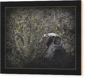 I See You Wood Print by Ernie Echols