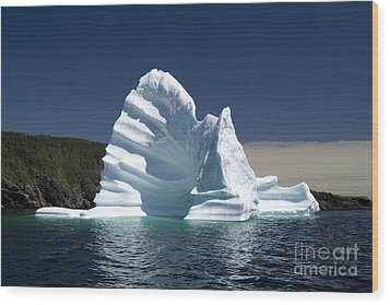 Wood Print featuring the photograph Iceberg by Liz Leyden