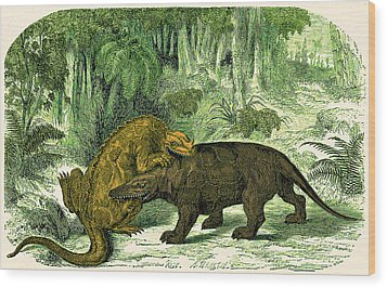 Wood Print featuring the photograph Iguanodon Biting Megalosaurus by Wellcome Images