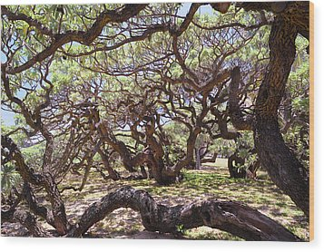 In The Depth Of Enchanting Forest Wood Print by Jenny Rainbow