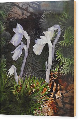 Indian Pipes Wood Print by Enola McClincey