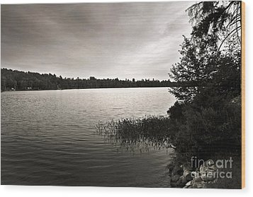 Jacob Buck Pond Wood Print by Paul Cammarata