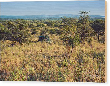 Jeep With Tourists On Safari In Serengeti. Tanzania. Africa. Wood Print by Michal Bednarek