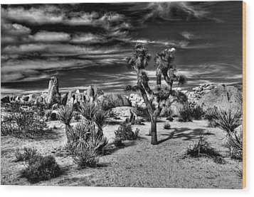 Wood Print featuring the photograph Joshua Tree Black And White by Benjamin Yeager