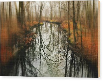 Just One Wish Wood Print by Diana Angstadt