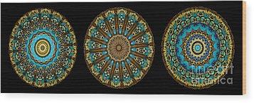 Kaleidoscope Steampunk Series Triptych Wood Print by Amy Cicconi