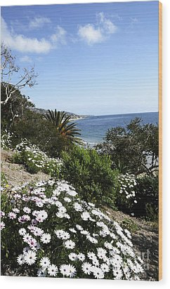 Laguna Beach  Wood Print by Timothy OLeary