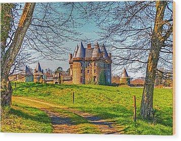 Chateau De Landale Wood Print by Elf Evans