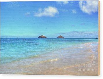 Lanikai Beach Oahu Hawaii Wood Print by Kelly Wade