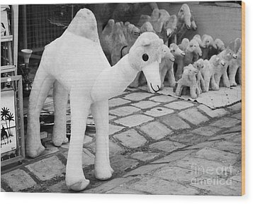 Large Soft Toy Stuffed Camel Souvenir At Market Stall In Nabeul Tunisia Wood Print by Joe Fox