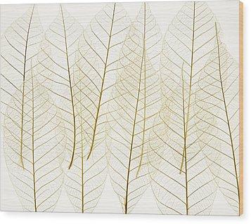 Layered Leaves Wood Print by Kelly Redinger