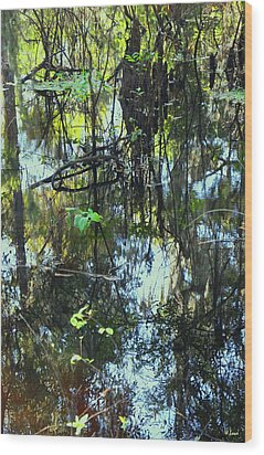Lettuce Lake Abstract Wood Print