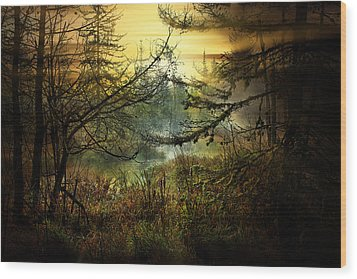 Life In The Forest Wood Print by Gary Smith