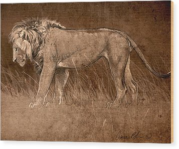 Wood Print featuring the digital art Lion Sketch by Aaron Blaise