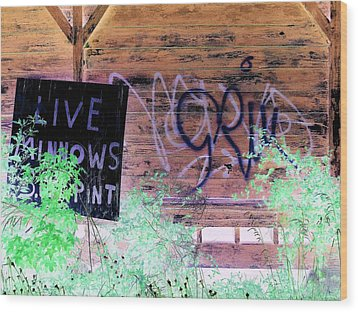 Live Minnows Wood Print by Dietrich ralph  Katz