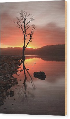Loch Ard Sunrise Wood Print by Grant Glendinning