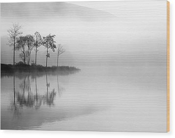 Loch Ard Trees In The Mist Wood Print by Grant Glendinning