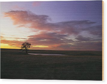 Lone Tree Pond Wood Print