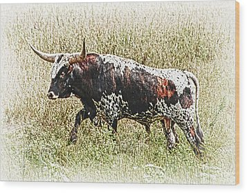 Wood Print featuring the photograph Longhorn Bull - A Strong Portrait by Bill Kesler