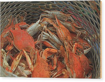 Louisiana Boiled Crabs Wood Print by Ronald Olivier