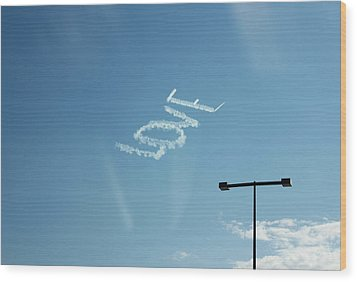 Wood Print featuring the photograph Love In The Air  by Lorna Maza