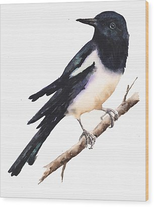 Magpie Painting Wood Print by Alison Fennell