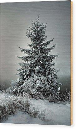 Majestic Winter Wood Print by Heather  Rivet