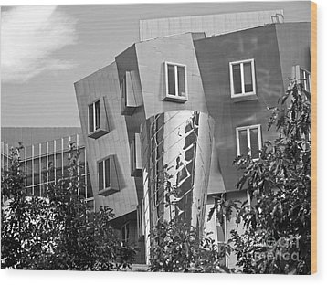 Massachusetts Institute Of Technology Stata Center Wood Print by University Icons
