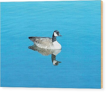 Wood Print featuring the photograph Mirror Goose by Kerri Mortenson