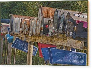 Mister Postman Wood Print by Timothy J Berndt