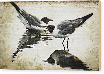 Morning Gulls Seagull Art By Sharon Cummings Wood Print by William Patrick